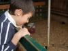 2006-12-18-DSC_0082