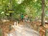 2008-10-13-DSC_0276